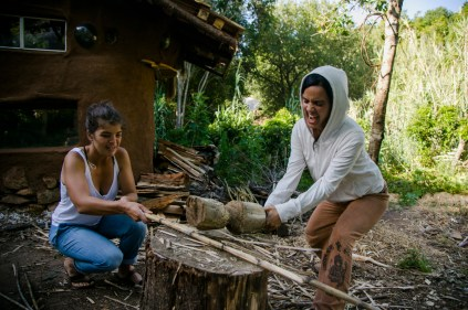 Making brown material from dried canas, the mediterranean version of woodchips, Photo credit Alice Smeets: http://www.alicesmeets.com