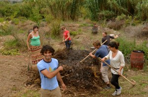 hot compost turning, author having fun while teaching the technique as well! Portugal, Escola Da Terra PDC, 2011