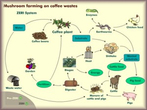 From ZERI and their coffee waste system