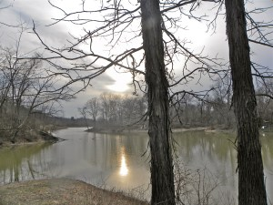 Hickory lakeside in the winter