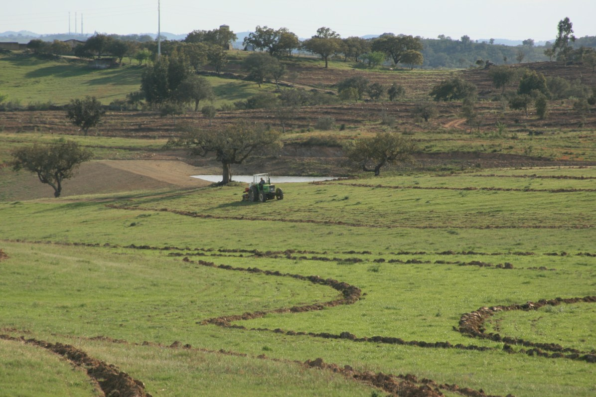 Field application of key line plough, Alentejo, Portugal 2015