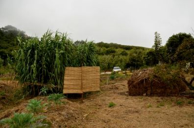 Unwinding tubing for compost in relative location of shower, left behind screens and in the middle of the cane grass 2011,, Portugal