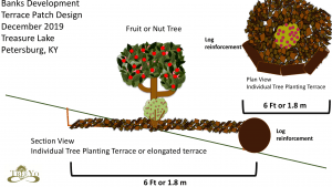 individual tree planting terrace schematic permaculture