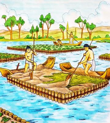 aft depiction of chinampas. from http://www.komoni.mx/la-primera-chinampa/