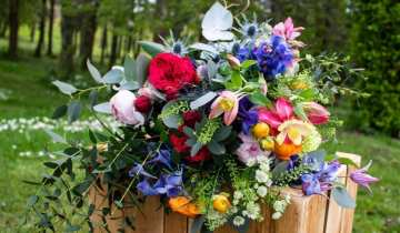 British Flowers Week | Why buy British flowers?