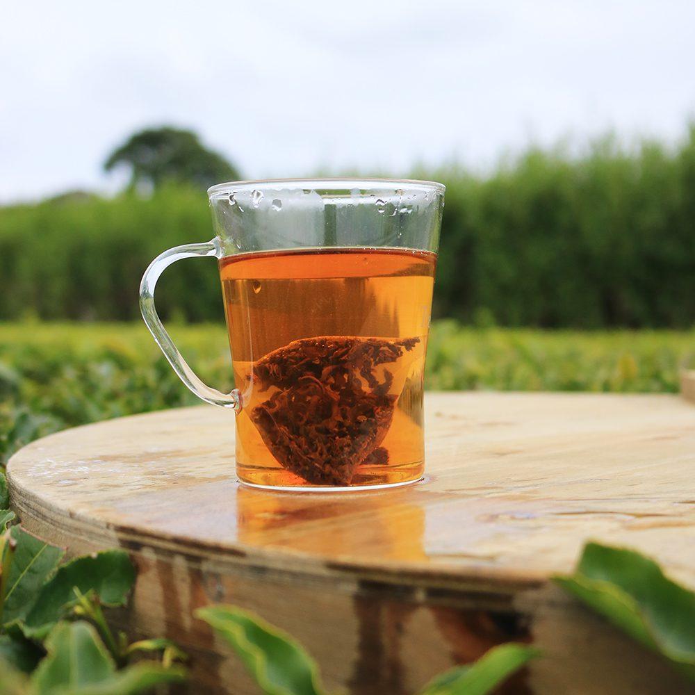 classic tea pyramid brewed in a tea garden