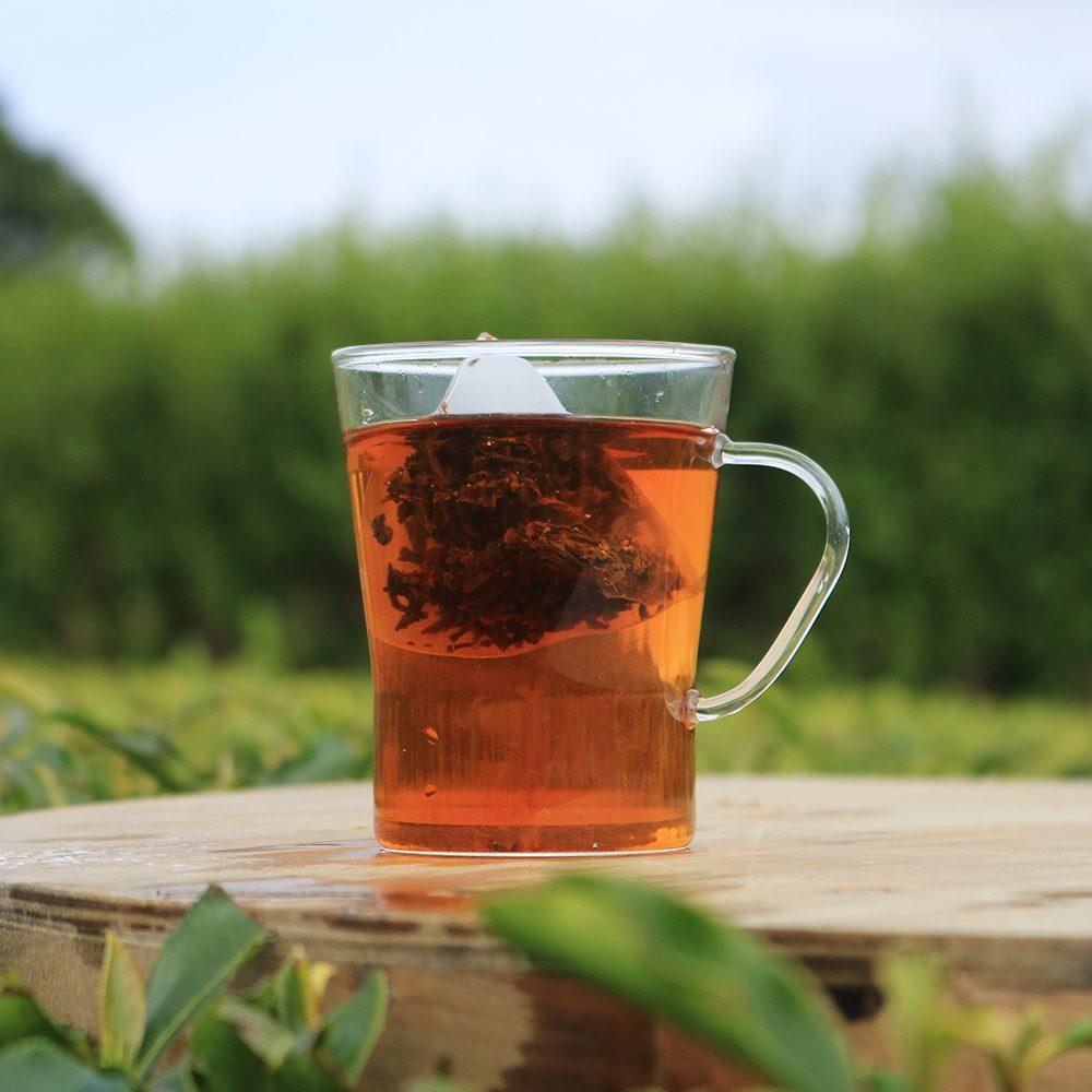 Great British Tea brewed in a tea garden