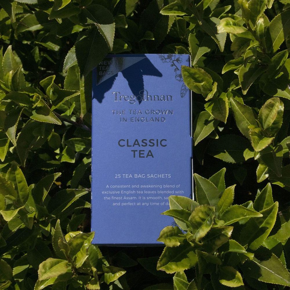 25 sachet Classic Tea