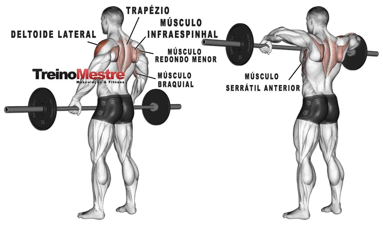 Remada Alta Execucao Correta Musculos Envolvidos E Como