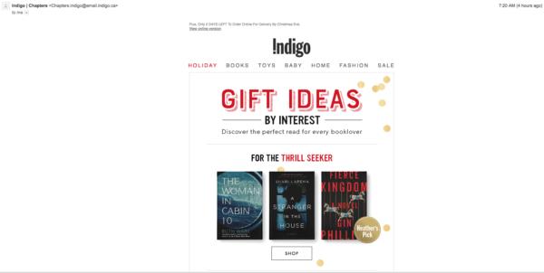Indigo ecommerce email marketing