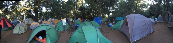 Morning at Forest Camp