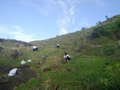Ghorawadeshwar - Tree plantation drive by FONA
