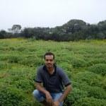 Kaas plateau visit - the misty flowers