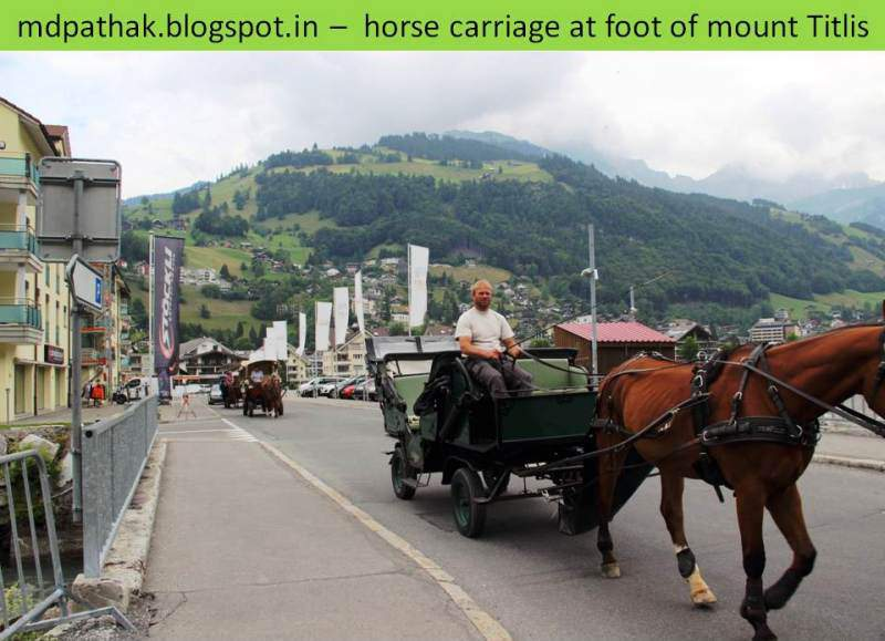 horse carriage at the foot of mount titlis
