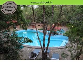 swimming pool at Tiger Moon Resort