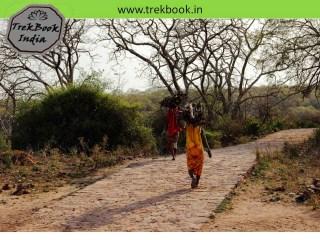 Sawai madhopur india