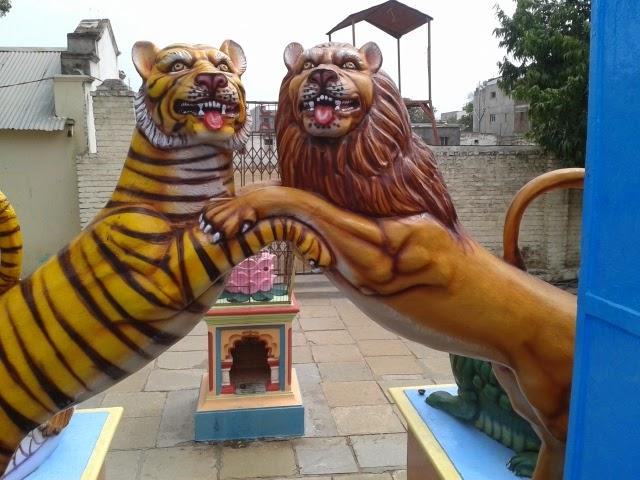 tiger Kaikadi maharaj math pandharpur