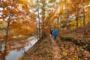 Hikers on trail in fall in Michigan