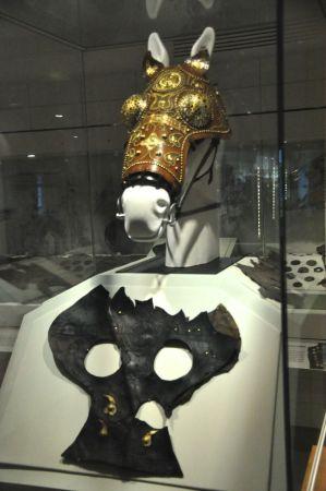 Horse head armor