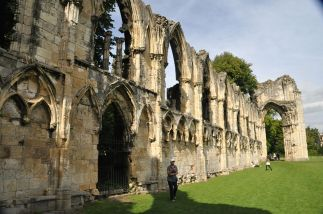 The ruins of St. Mary's Abbey (and Ginger)