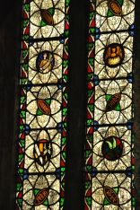 Stained glass, St. Mary's Cathedral