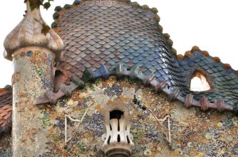 The reptilian roof