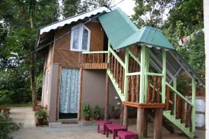 Sikkim & West bengal 2015 242