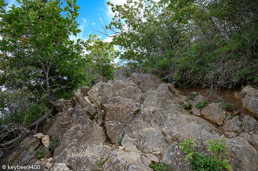 本社ヶ丸へ続く道は岩登りだらけ