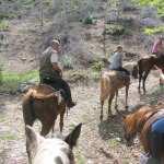 tra le valli di castelluccio di norcia a cavallo