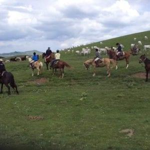 Escursioni a Cavallo | Archivi categoria: Valnerina | Pagina 10
