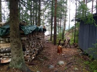 Liesjärvi, Siltalahti