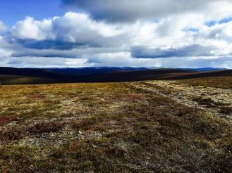 Urho Kekkosen kansallispuisto, UKK National Park, Rautupää