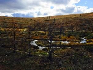 Urho Kekkosen kansallispuisto, UKK National Park, Rautulampi