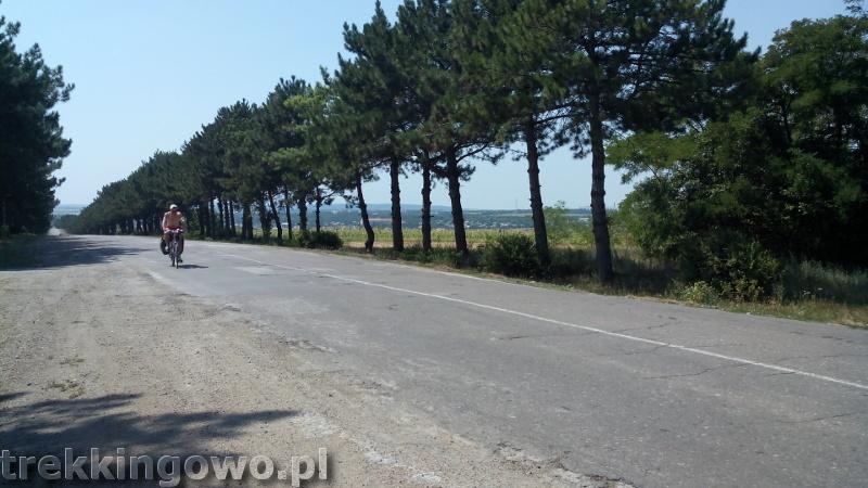 Mołdawia - Dzień 4 drogi sosny trekkingowo