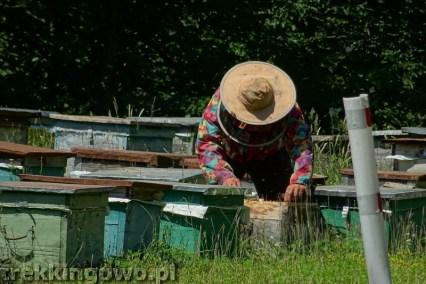 Gruzja pasieka pszczelarz trekkingowo.pl