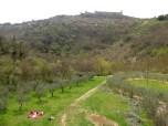 Assisi e la radura