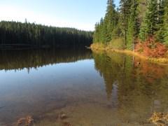 Placid Lake - Indian Heaven