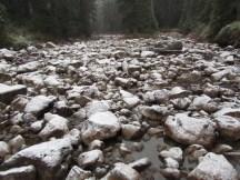 Rush Creek In Indian Heaven