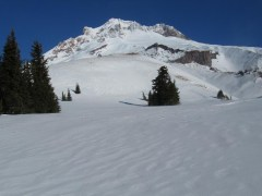 A view of Mt. Hood. To windy, icy and past my turn around time to make it up to Mississippi Head Wall.