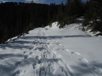 Snowshoe around Barlow Butte