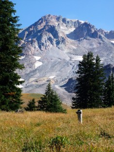Mt. Hood. Junction of Paradise Loop and Paradise Trail.