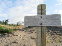 Timberline trail this way. For this section the Timberline Trail and the PCT are one.