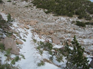 Heading along Timberline Trail to the high point of the trail.