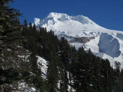 I braved an icy slope and strong winds to get a photo of Mt. Hood at one of the view points along the trail.
