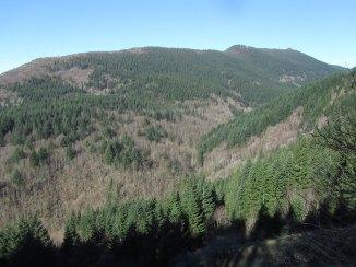 Hardy Ridge