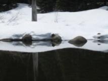 North Lake and snow