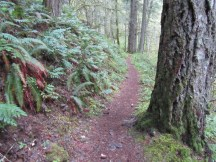 A section of the trail
