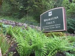 Started my hike at the Wahkeena Falls Trailhead