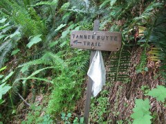 Start of the Tanner Butte Trail