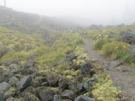 We started the hike in heavy fog and could not see more the 50 ft. We were afraid it would be that way all day.